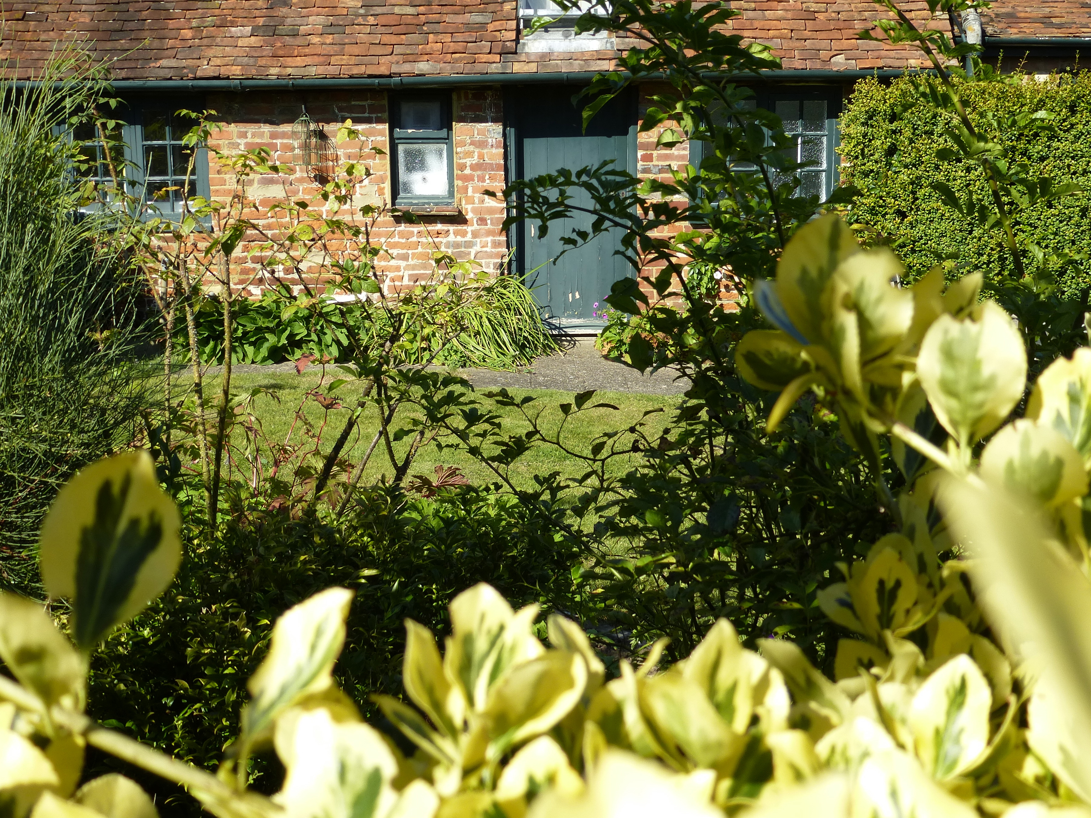 Mistletoe cottage part of the back garden